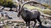 Nuestra biodiversidad es un valor indiscutible para el turismo