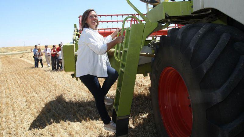 La cosecha de cereal 2018 en Castilla y León superará los 7 millones de toneladas