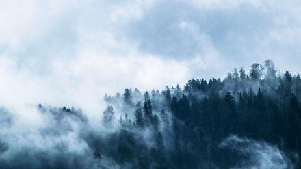 Ávila registra la temperatura más baja del país