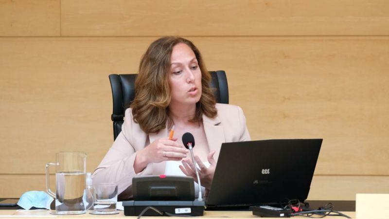 Inmaculada Gómez: 'El Plan Territorial de Fomento para Ávila debe retomarse cuanto antes'