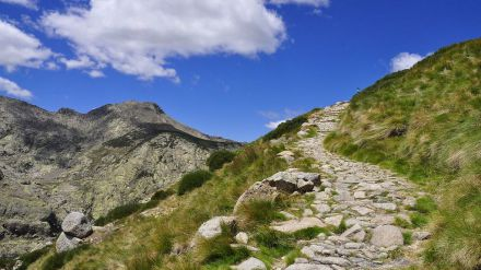 Colocaba trampas prohibidas en espacios naturales de Gredos