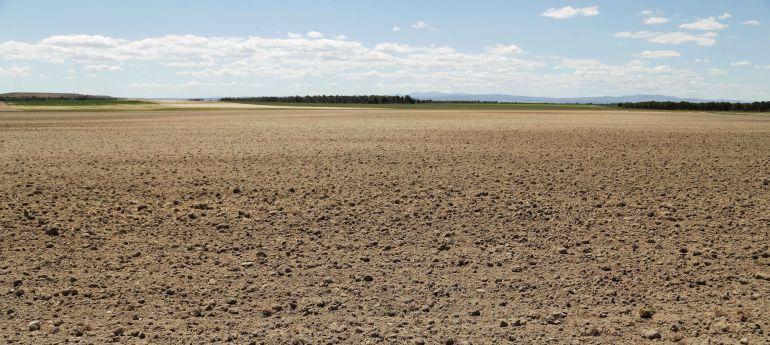 UCCL pide la declaración de zona catastrófica para Ávila por las pérdidas de 74 millones a causa de la sequía