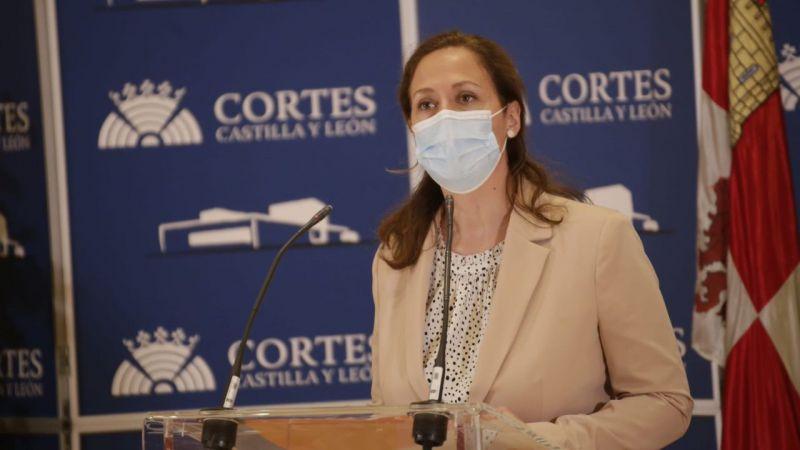 Ciudadanos pide en las Cortes el respaldo de la Junta a la planta fotovoltaica de Las Navas del Marqués