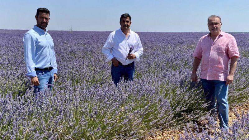La Diputación se interesa por el modelo agroturístico del cultivo de lavanda con el objetivo de extrapolarlo a La Moraña