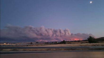 Ciudadanos también solicita la declaración de zona catastrófica para los municipios afectados por el incendio