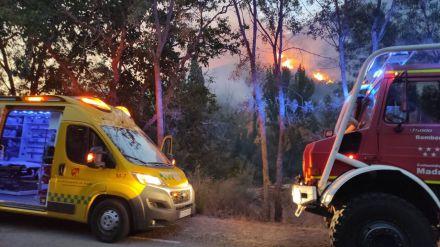 WWF pide al Gobierno un plan de restauración integral y participativo tras el incendio de Ávila