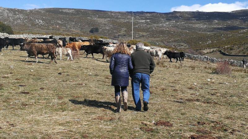 Alicia García explica los beneficios para Ávila del plan de choque del PP contra la despoblación