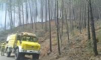 Controlan el incendio de Arenas de San Pedro