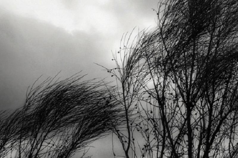 Fomento y Medio Ambiente pide precaución a la población por el fuertes vientos