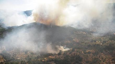 Por Ávila pide información en las Cortes sobre los incendios del Valle del Tiétar